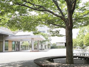 コミュニティガーデン(けやきの広場)