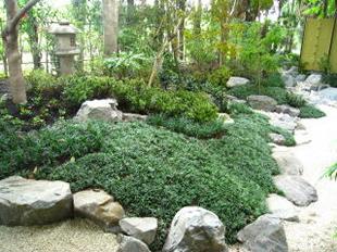 風情のある日本庭園